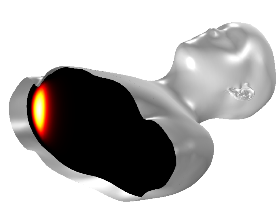 A simulation of a head and torso in COMSOL Multiphysics