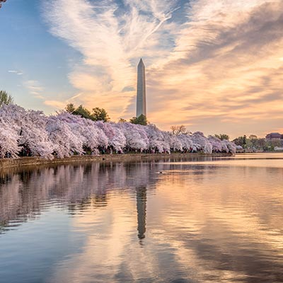 Washington, D.C. Landmark
