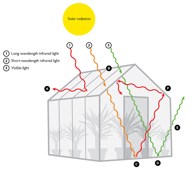 Greenhouse effect: How a greenhouse works