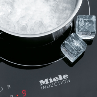 Induction stove top