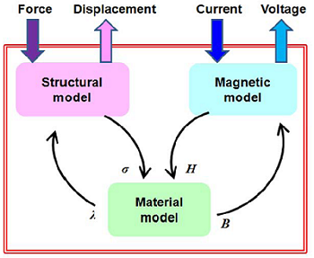 Simulating the magnetic and structural behavior of a magnetostrictive material