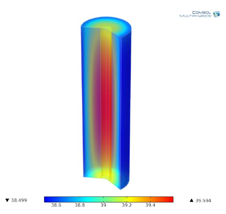 模型描绘了电池的温度场分布。