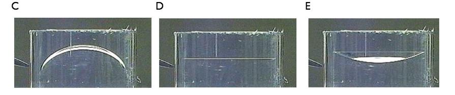 照片展示了施加不同电压时半月面形状的变化。