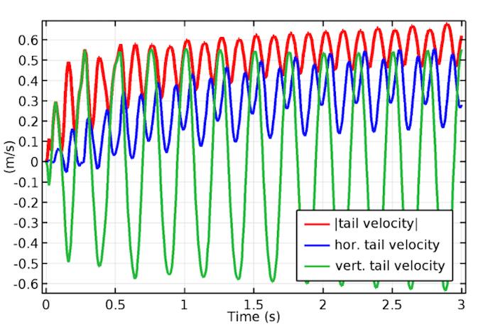 鱼尾的速度图。