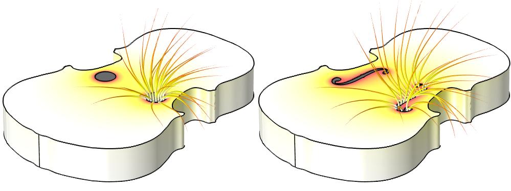 两幅图显示了小提琴中圆形和 f 形音孔上的速度势分布与空气流动。