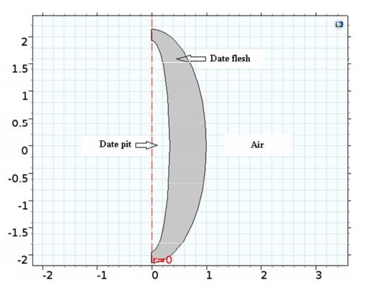 Model geometry 优化椰枣热加工过程中的水化操作