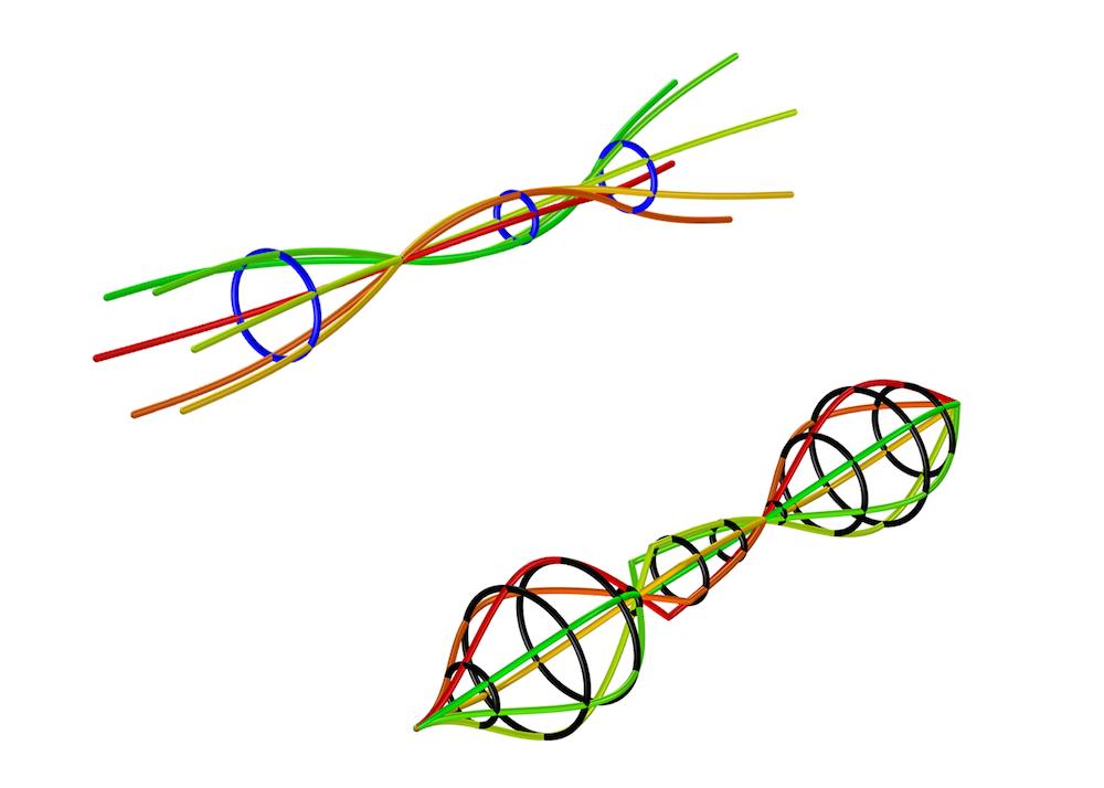 '转子动力学模块'中的回旋图示例。