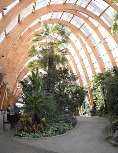 具有倒悬链线结构的室内花园。