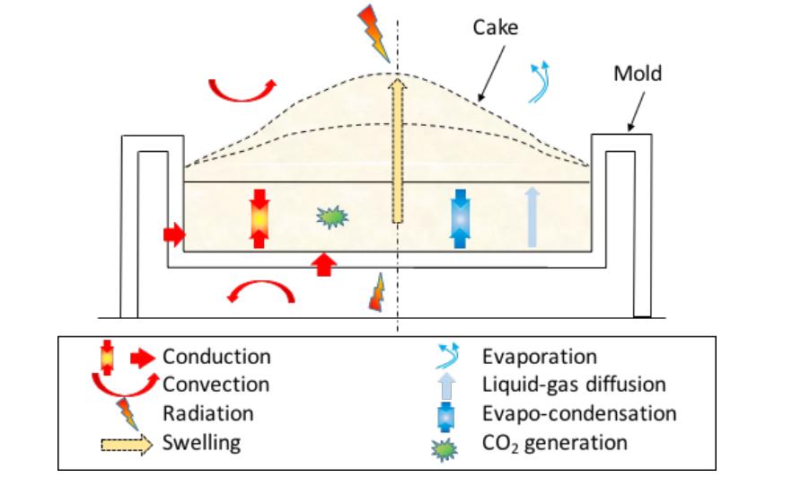 蛋糕烘焙过程中物理现象的示意图。