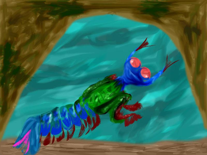 孔雀螳螂虾的绘画作品。