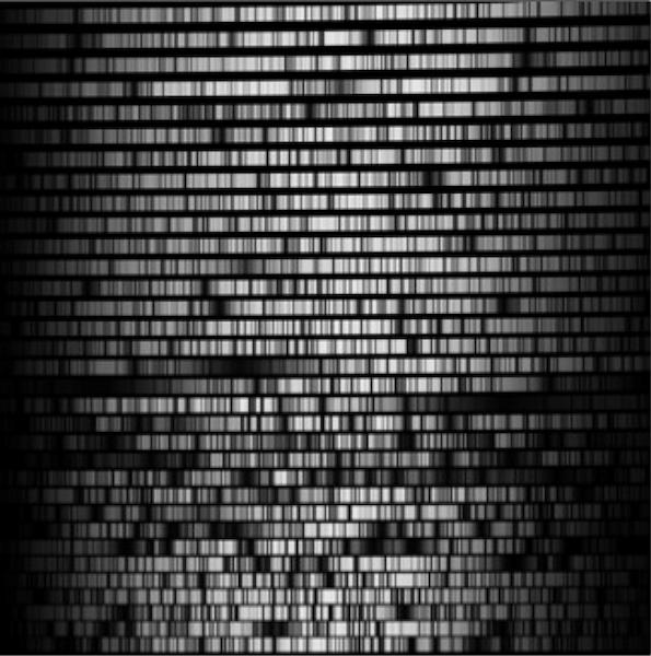 图片显示二维中阶梯光栅光谱格式的一个示例。