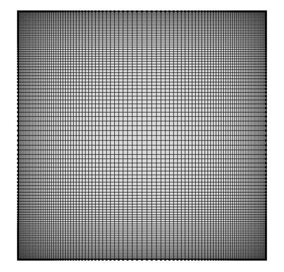 图片显示了 COMSOL Multiphysics® 中的映射网格。