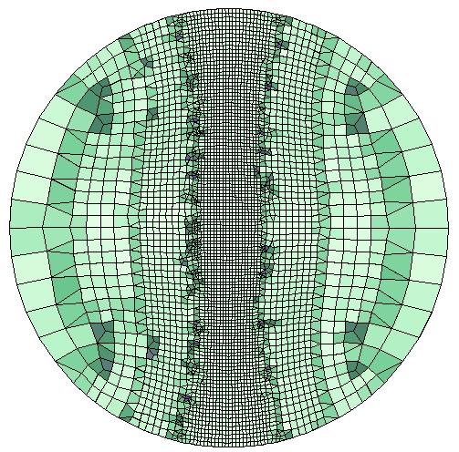 圆形几何中自适应后的网格