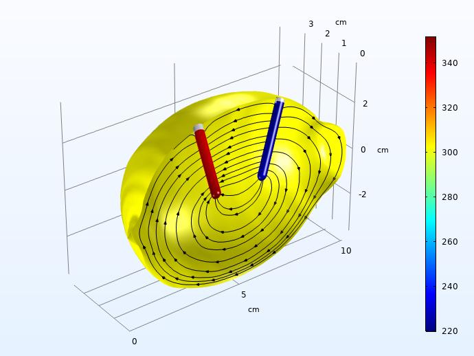 一个流线图,显示了柠檬电池模型在充电脉冲后 30 秒内氢和锌的溶解活化过电位。