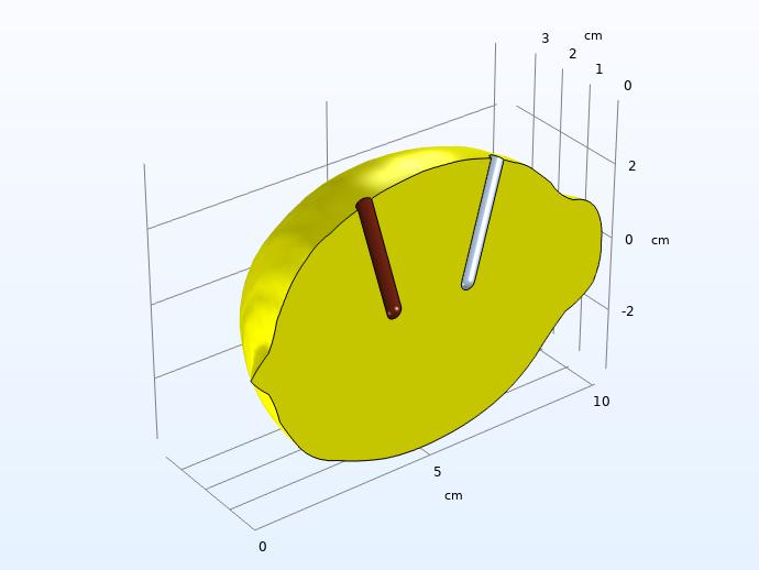 应用对称条件以节省计算资源后,柠檬电池的计算域。