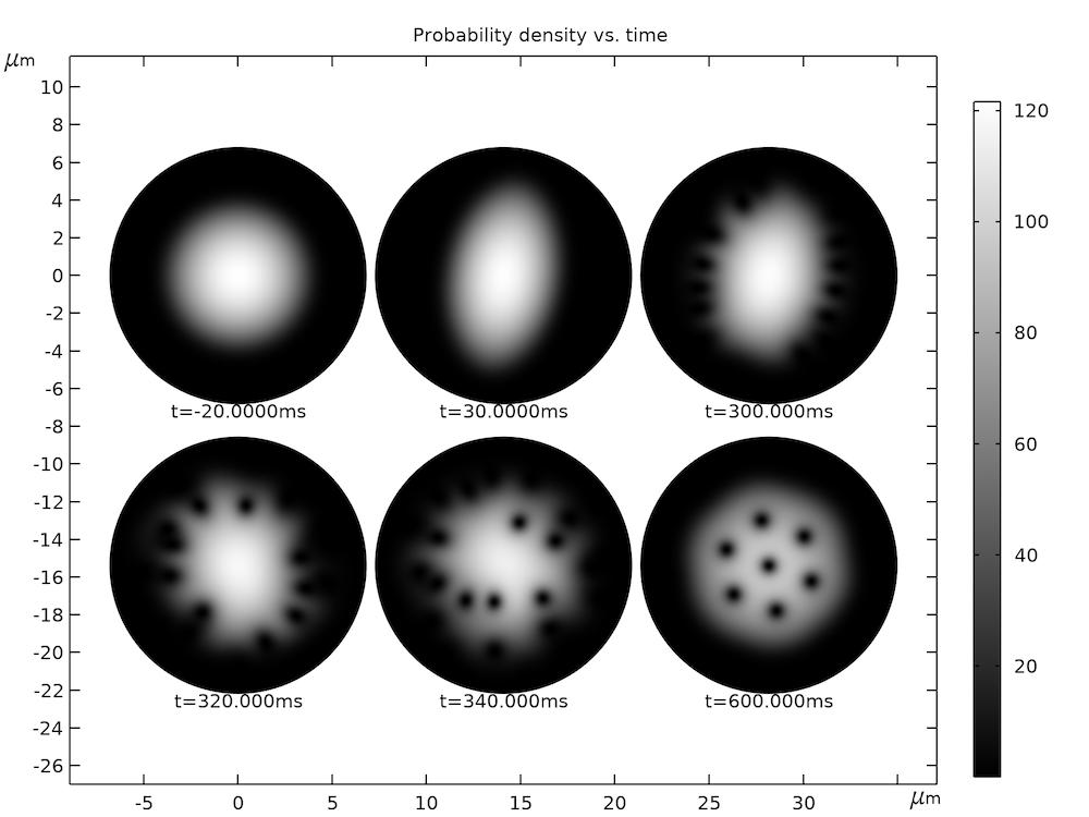 结果图显示了计算出的粒子密度分布图的6个不同时间实例。