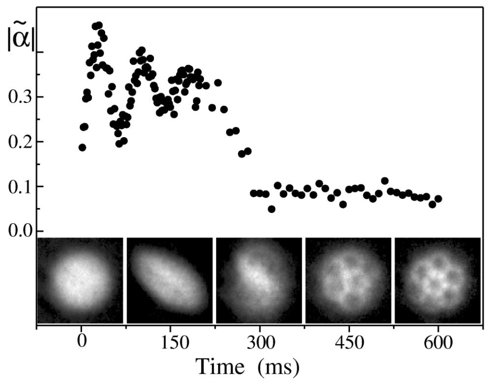麦迪逊等人的论文中的一个数字。 证明了玻色-爱因斯坦凝聚原子被困云中的涡旋晶格形成