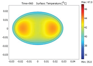 Science of Cooking COMSOL Multiphysics model of fish