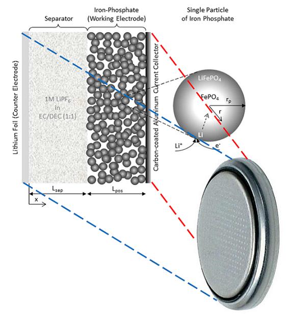 Macroscopic vs. Microscopic: Model of the iron-phosphate cathode