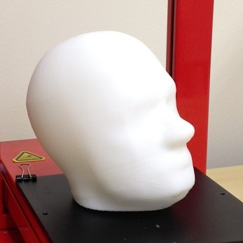 3D printed model of a human head