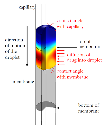 The operating principle of the drug delivery device