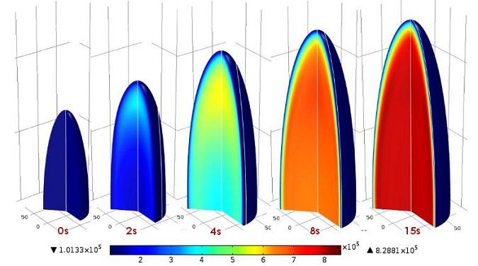 耦合传递与固体力学来分析大米膨化