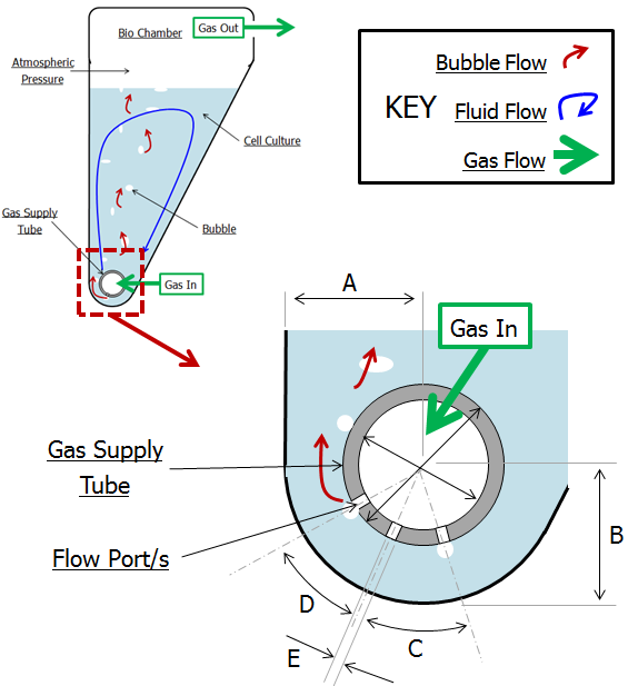 A schematic of bioreator and parameters