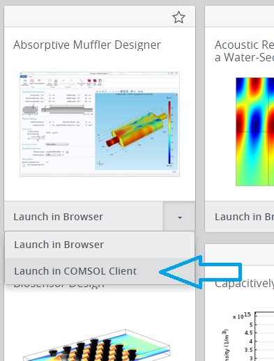 A screenshot showing the Launch in COMSOL Client option.