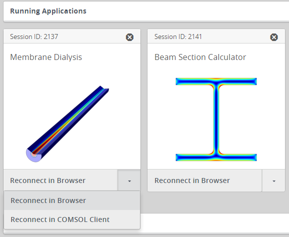 A screenshot of the options to reconnect to a running app on COMSOL Server™.