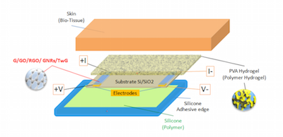 Graphene biosensor schematic featured
