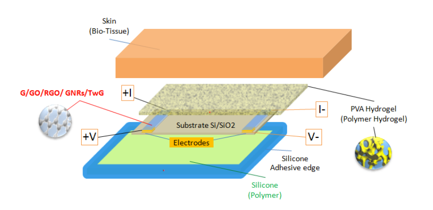 A schematic of a multilayered graphene biosensor device.