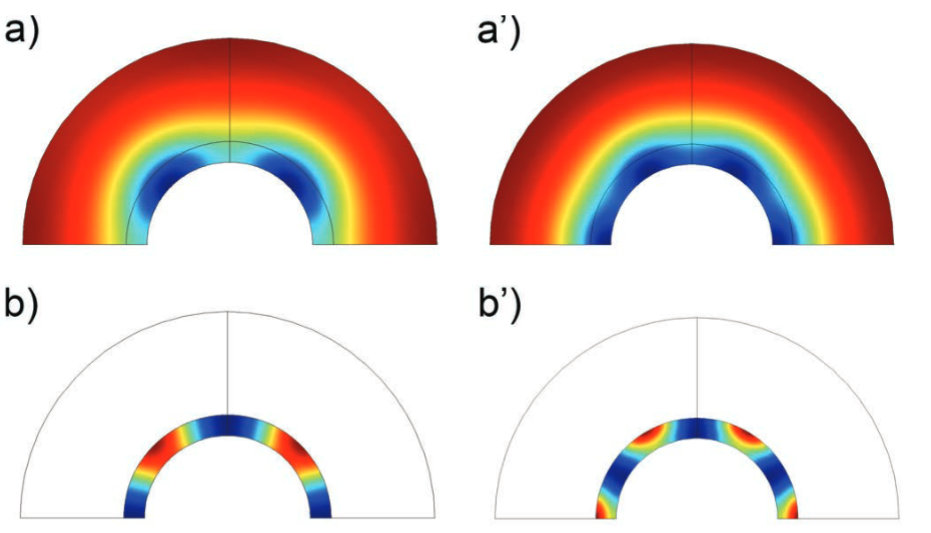Figures depicting a simple Turing-type model in COMSOL Multiphysics.
