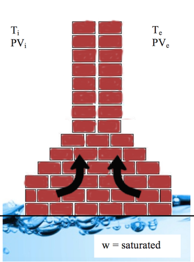 Schematic depicting water uptake.