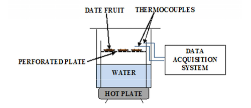 A schematic illustrating the experimental setup for studying the hydration operation in the thermal processing of dates.