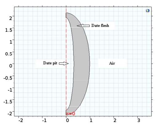 A screenshot of the model geometry, which includes the date flesh, date pit, and saturated air.