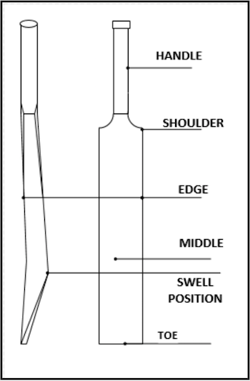 A schematic of a cricket bat.