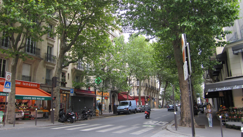 Image depicting a tree-lined city street.