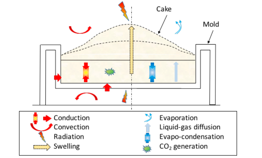 A schematic of the physical phenomena that take place while a cake bakes.
