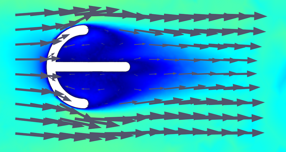 A 2D model of Parvancorina facing the flow, copyright Imran A. Rahman.