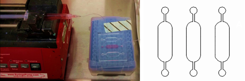 A photograph of a cell culture experiment on a chip and a CAD representation of a cell culture chip experiment.