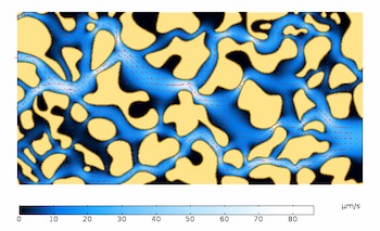 Velocity magnitude color plot flow through a porous material featured