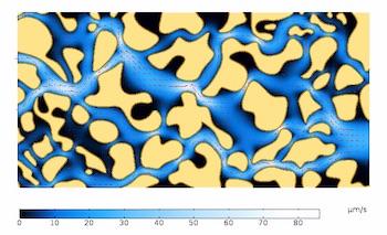 Velocity magnitude color plot flow through a porous material featured