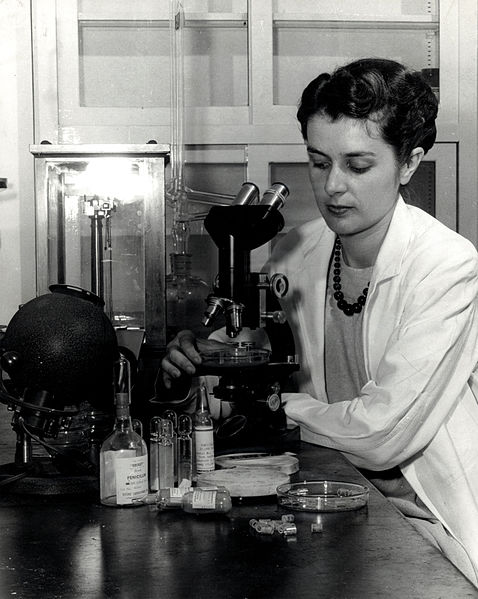 A photograph of an FDA employee testing early penicillin samples.