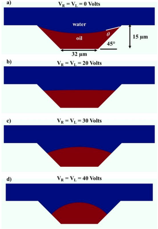 Models for different voltages applied to a microlens with a 45-degree taper angle.