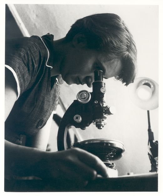 A photograph of Rosalind Franklin using a microscope.