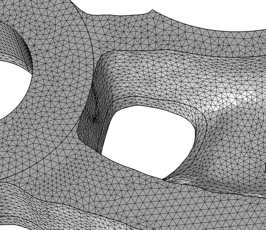 A screenshot of the mesh after using the Adapt operation.