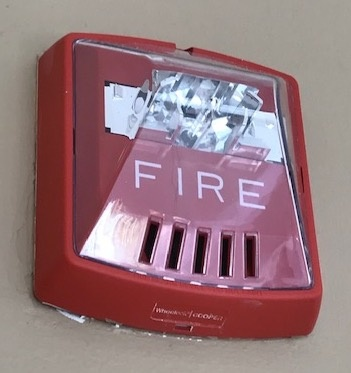 A photograph of a typical building fire alarm horn.