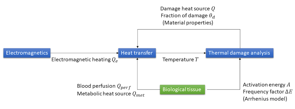 A chart of the different multiphysics couplings used to model hyperthermia therapies.