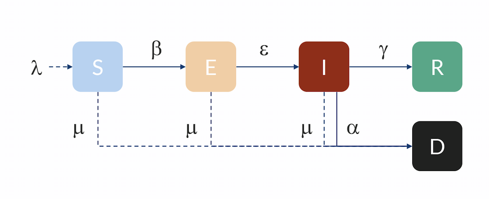 A schematic of the SEIR model, a reasonably predictable compartmental model for human-to-human disease transmission.