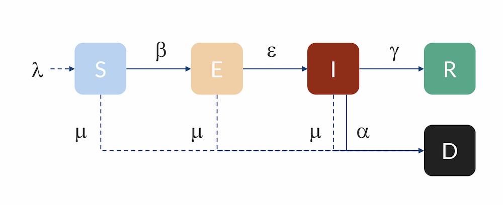 Схематическое изображение модели SEIR, позволяющей строить разумные прогнозы распространение болезни среди людей.